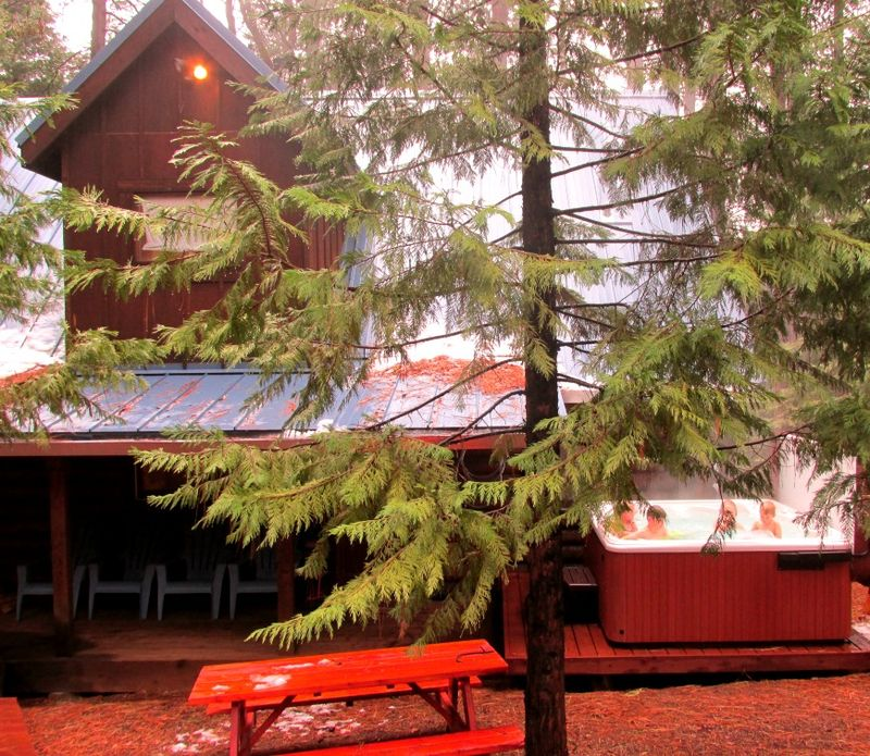 Cabin under the pines hot tub