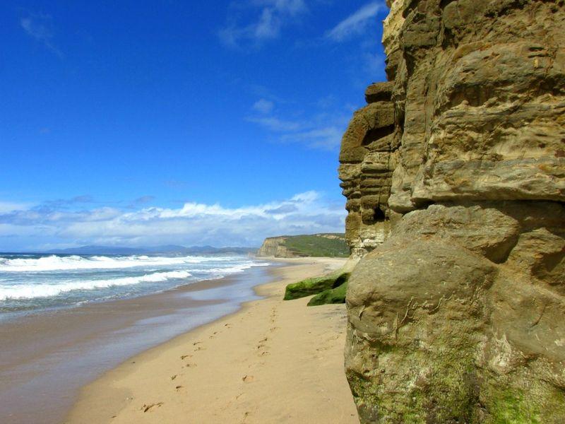 Pomponio state beach cliff 2