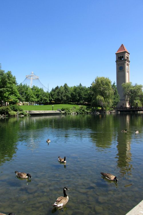 Spokane riverpark clock tower and ducks
