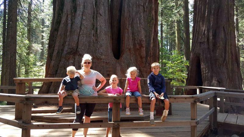 Cabin heidi big trees kids 20150804_105657