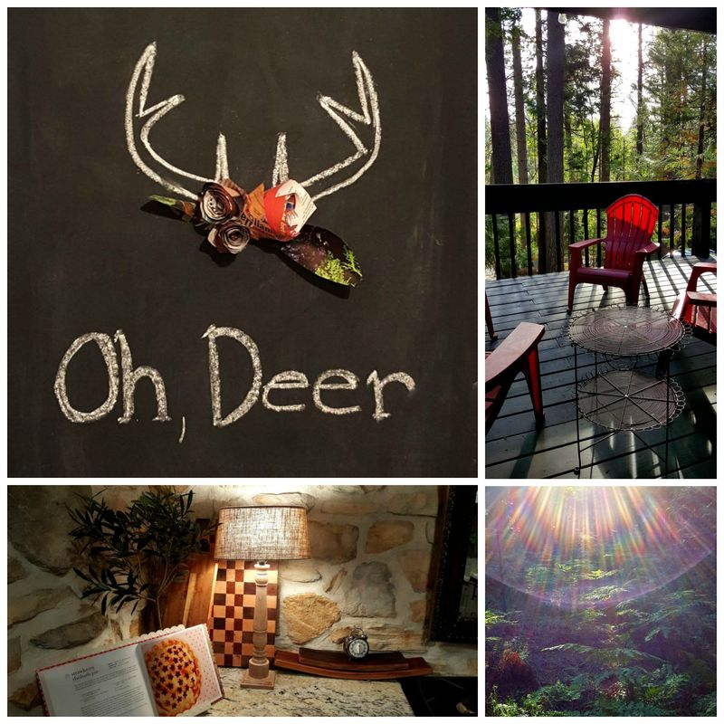 Cabin oh deer aug 2015  Collage