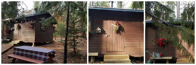 Snowshoeing bunkie Collage