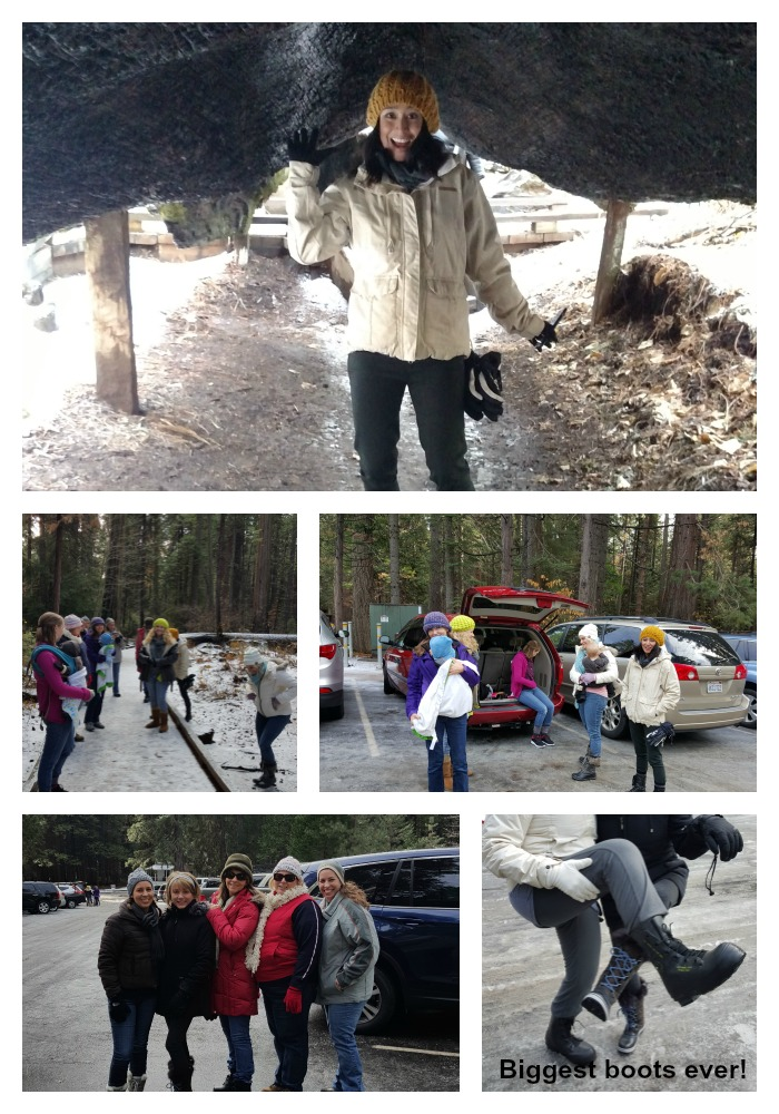 Snowshoeing boots Collage