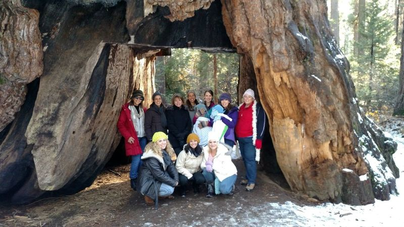 Snowshoeing girls hole in tree