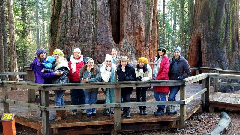 Snowshoeing big sisters tree