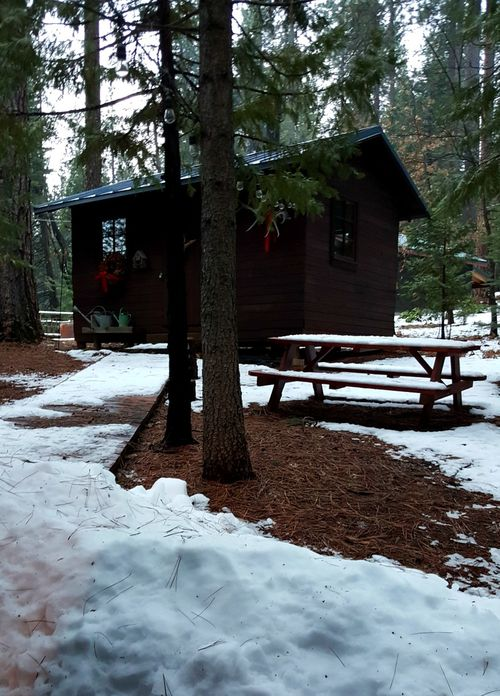 Cabin-bunkie snow feb 2016