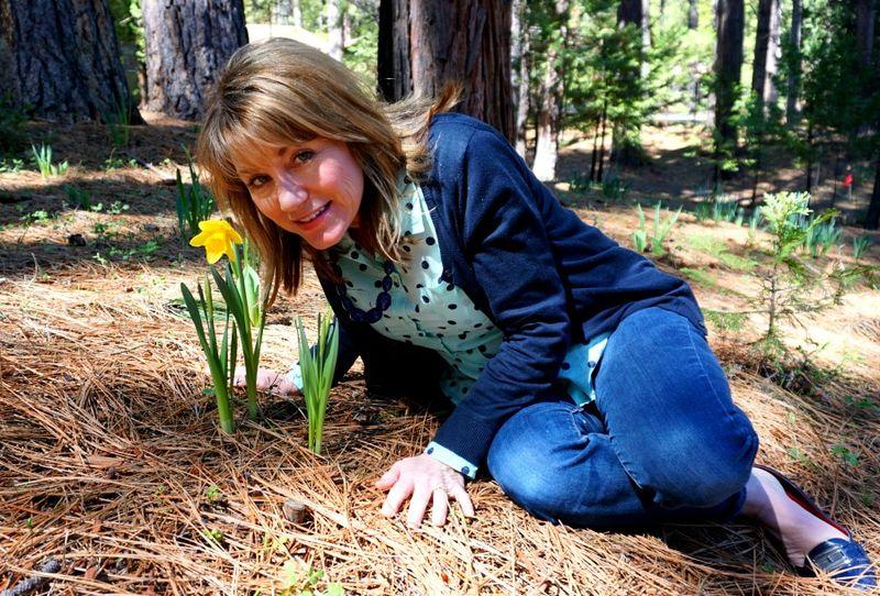 Daffodil DSC00260