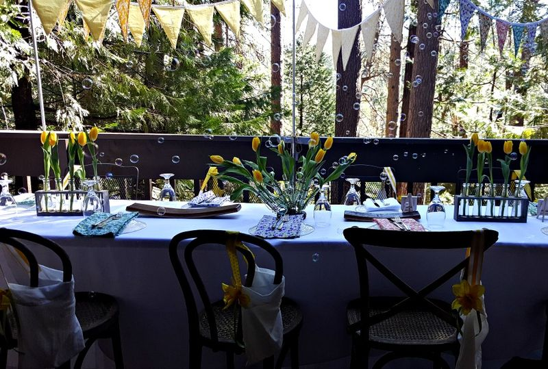 Cabin daffodil day bubble table