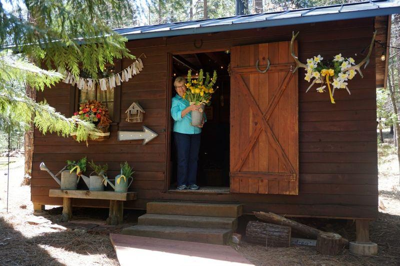 Cabin daffodil day bonnie