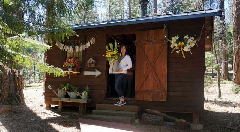 Cabin daffodil day nancy