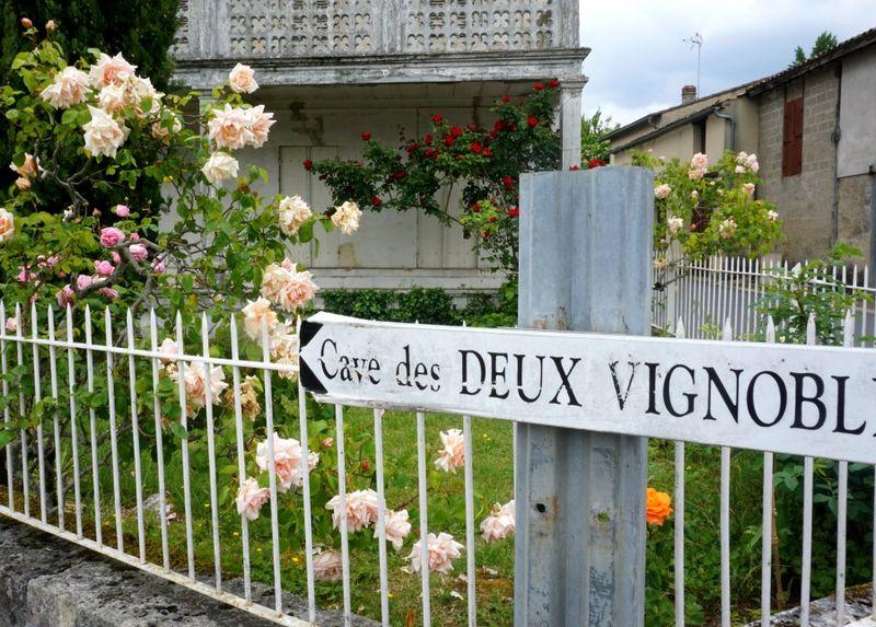 Academy france rose sign 921