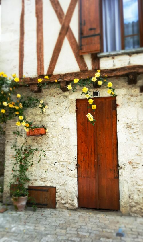 Academy france rose door yellow