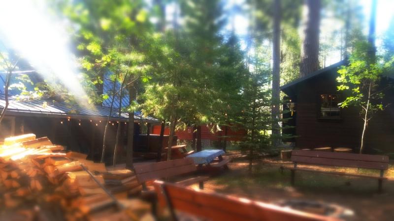 Shannon cabin picnic table