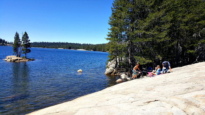 Shannon lake alpine rock