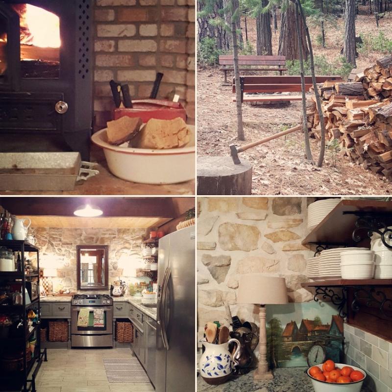 Cancer cabin