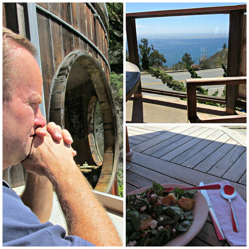 Tree house coast cafe Collage