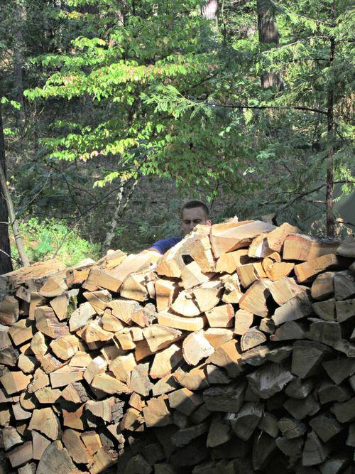 Denver wood