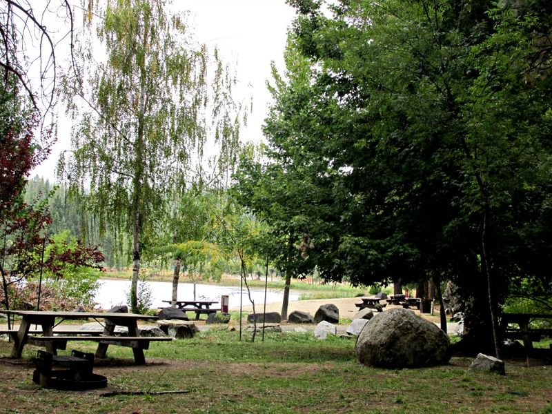 Cabin picnic area 1