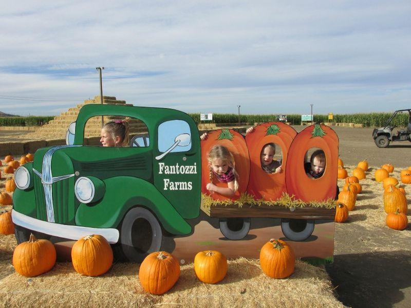 Corn maze truck 2