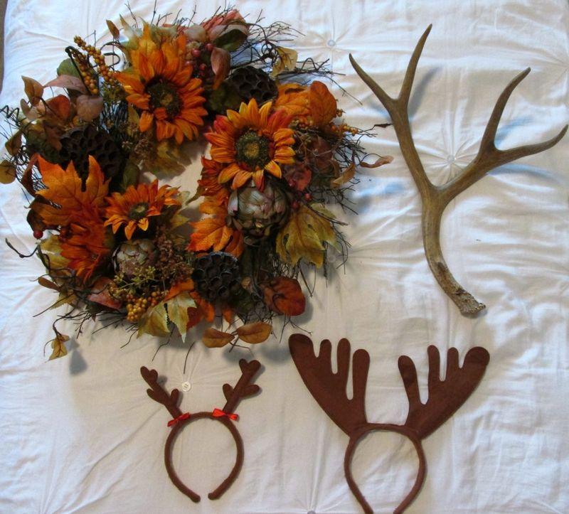 Enchanted fall gathering deer