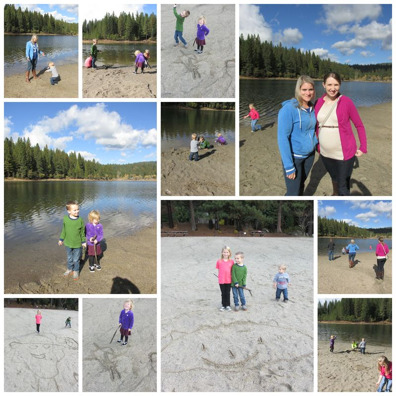 Cabin white pine lake Collage