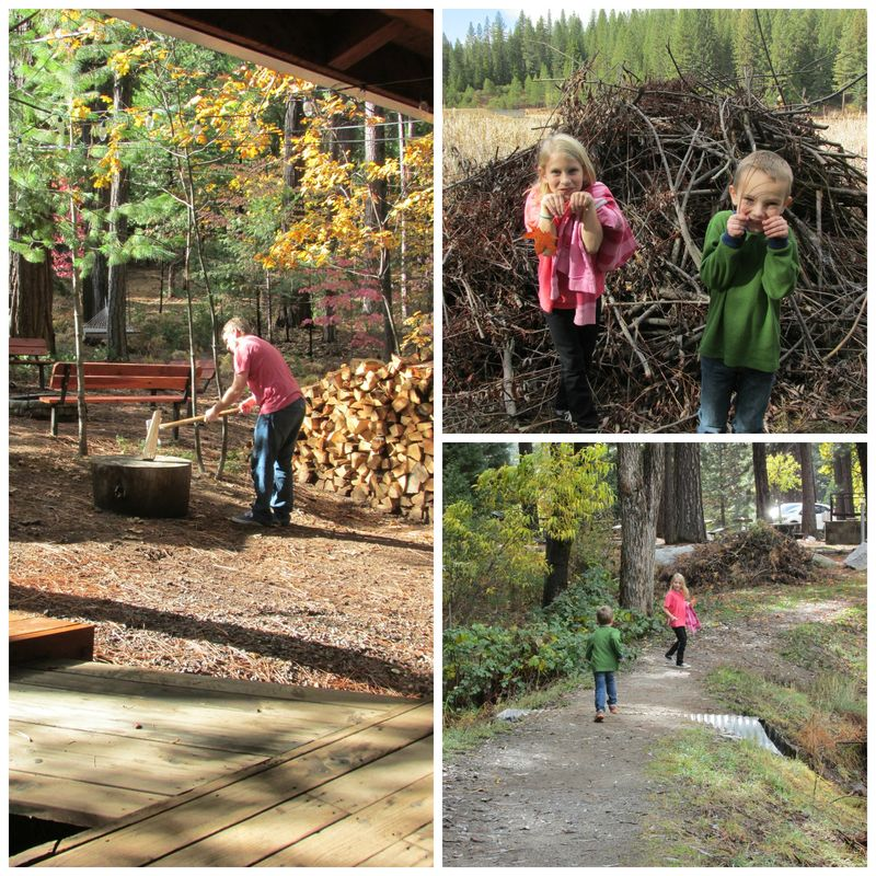 Cabin kent and little beavers Collage