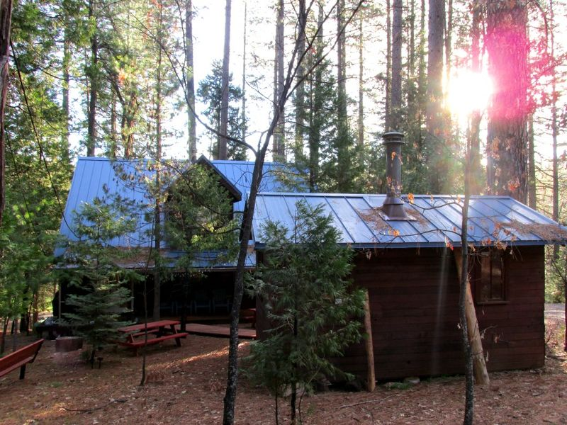Cabin blue roof