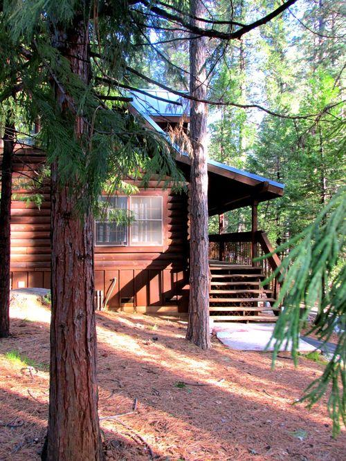 Cabin blue roof side