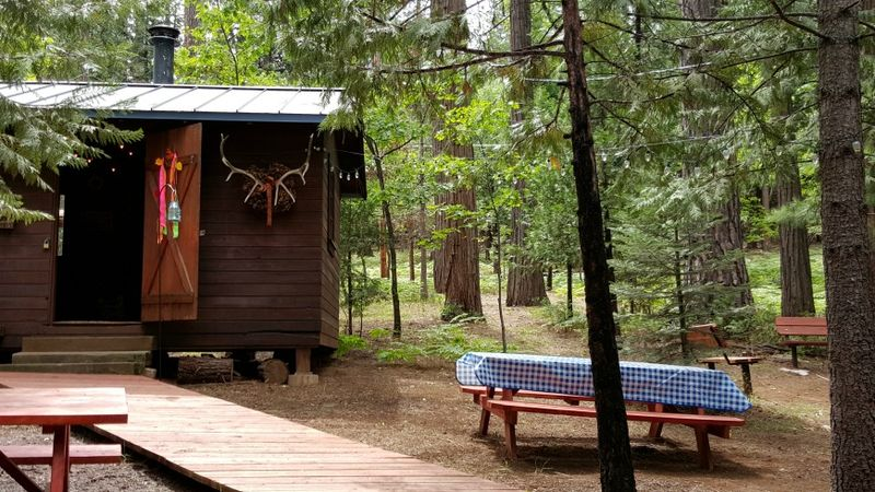 Cabin bunkie table