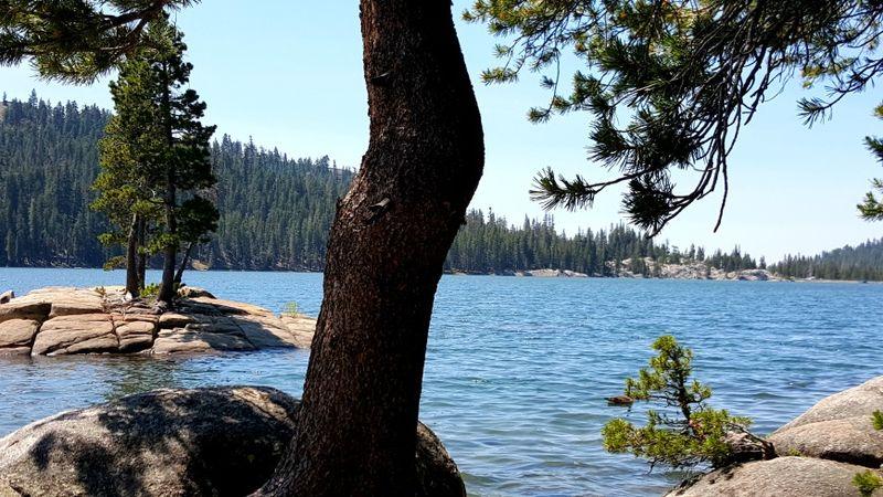 Cabin 2015- alpine lake trees