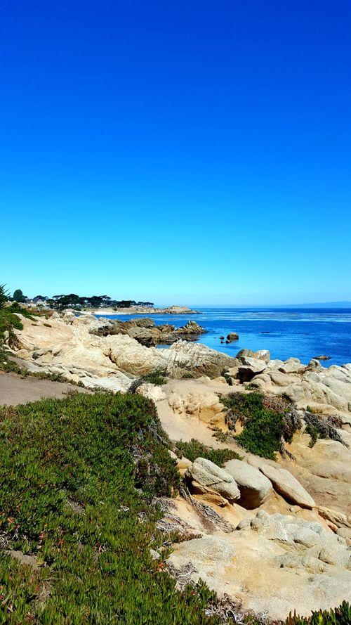 Sunshine and saltwater monterey