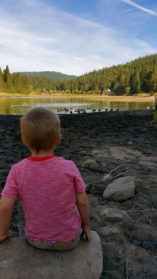 Fall at the cabin cole at the lake