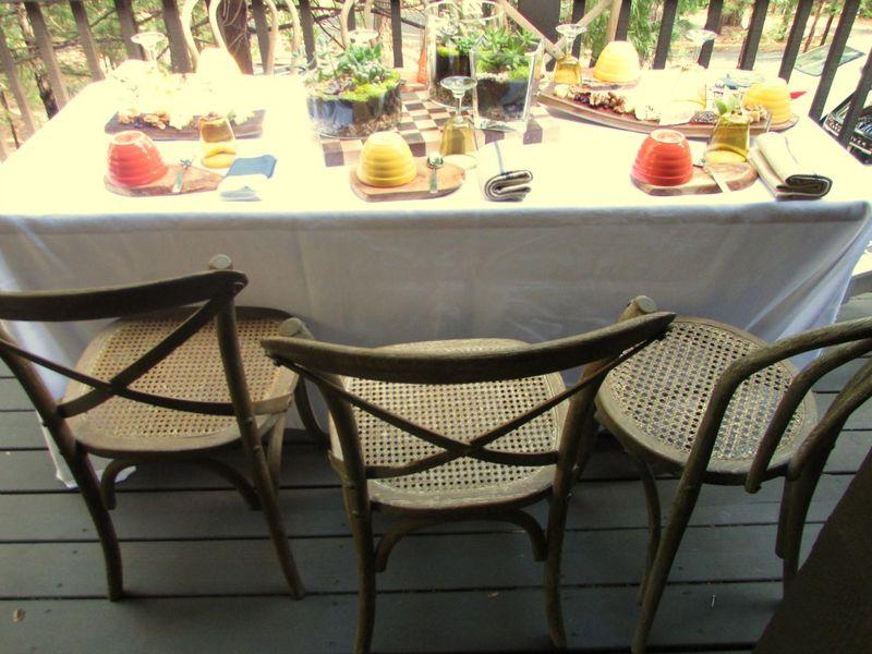Fall- Terrarium chairs