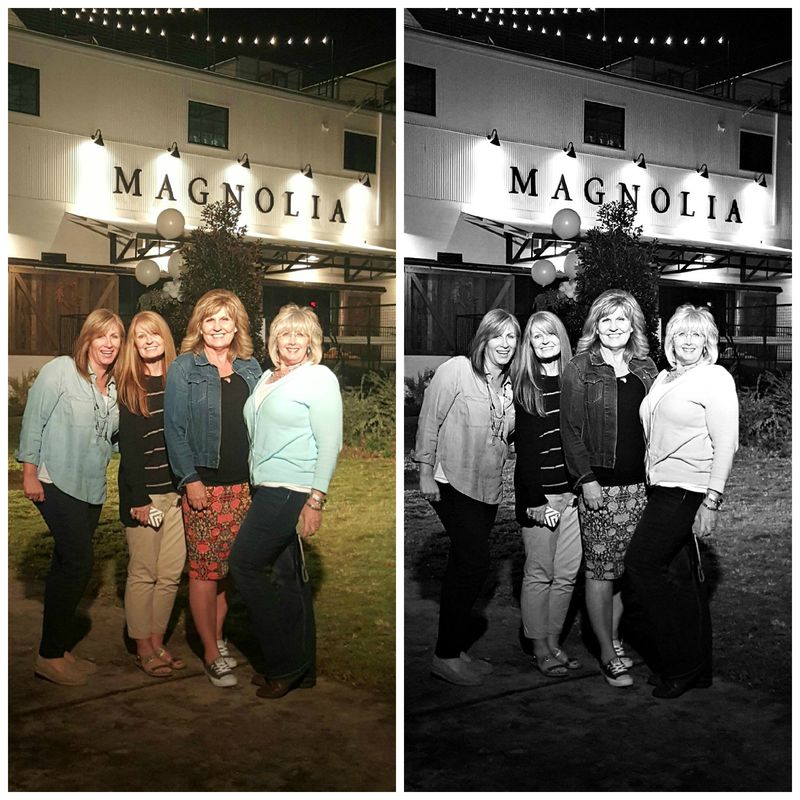 Magnolia group Collage