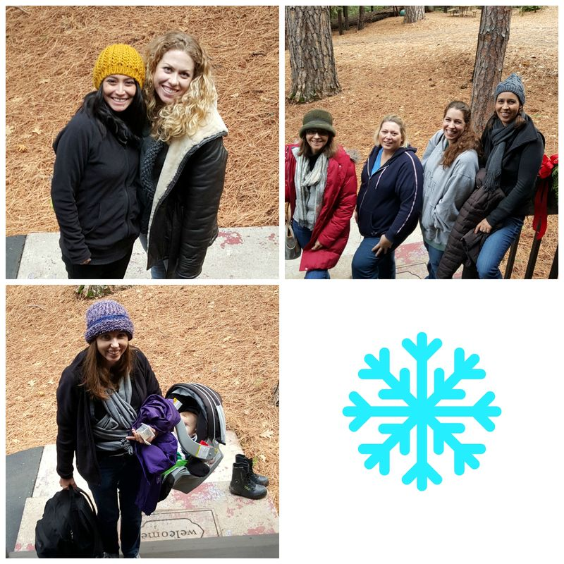 Snowshoeing on the steps Collage