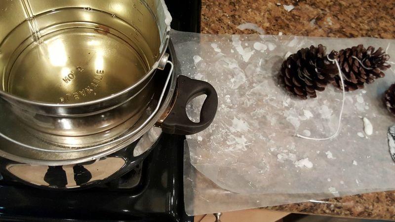 Pine-cone fire starters wax
