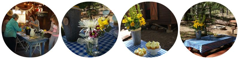 Cabin daffordil day bunkie flowers Collage