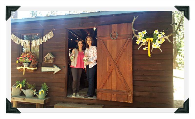 Cabin daffodil day bunkie pattie and kristin