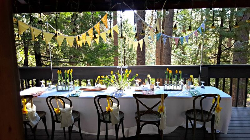 Cabin daffodil day table and bags