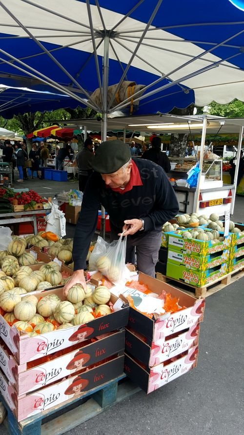 Academy france riberac melons