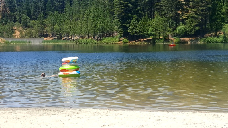 Shannon cabin white pine lake