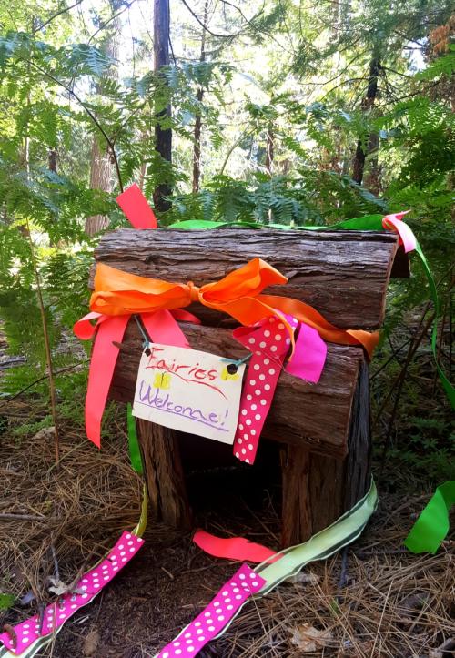Shannon cabin annas fairy house