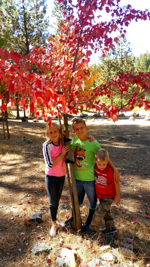 Cabin kids Oct 2016 red tree
