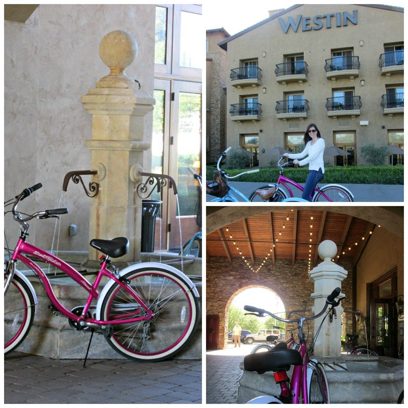 Bike riding westin Collage