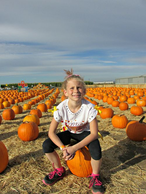 Carlee pumpkin patch