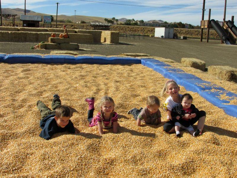 Corn maze grandkids corn pit
