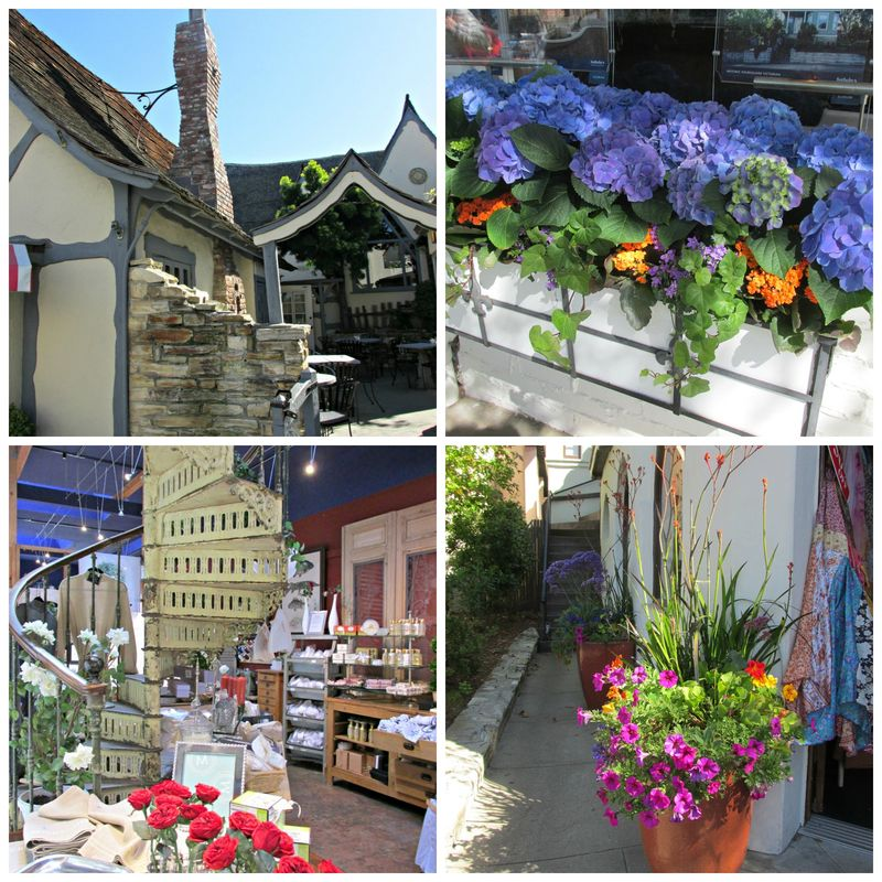 Carmel shopping Collage