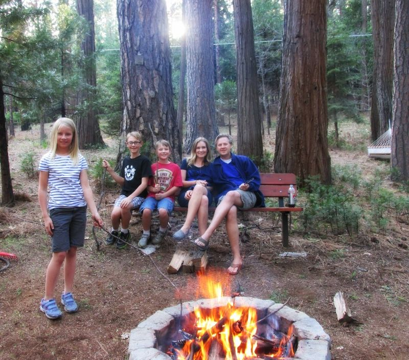 Cabin under the pines shannon firepit