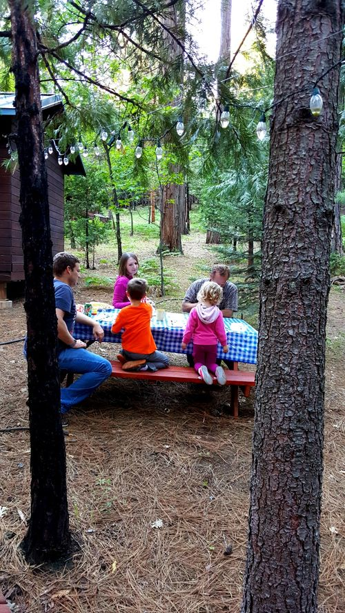 Cabin under the pines table