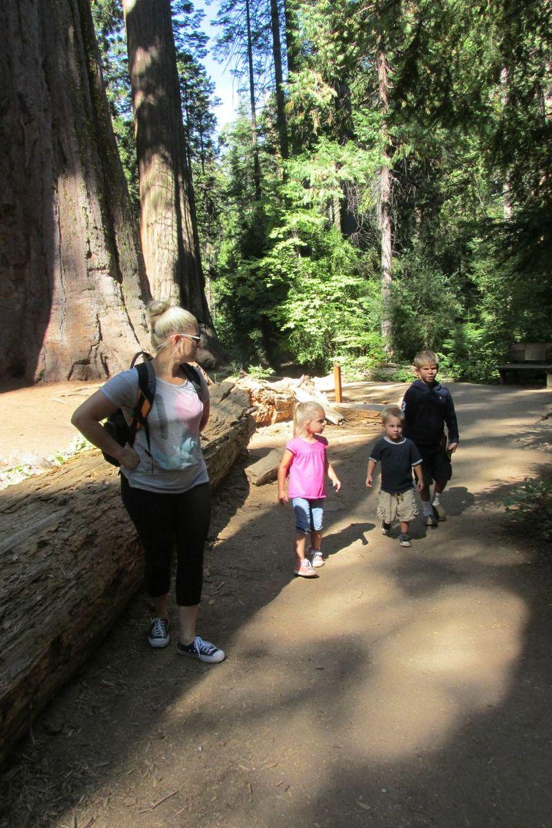 Cabin big trees heid audrey cole and preston